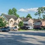 tree removal fort worth