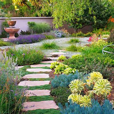 sacramento landscaping